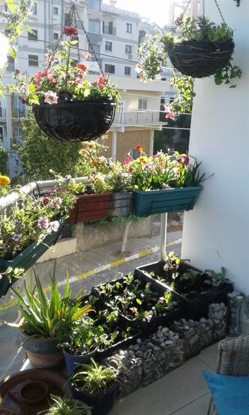 Girne Belediyesi En Güzel Bahçe, Balkon Yarışması Sonuçları Belli Oldu