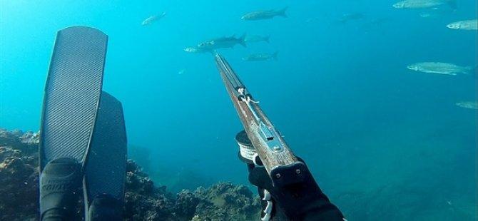 Boyutları yasal limitin altında Orfoz balığı avlayan iki kişiye yasal işlem