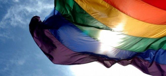 Polonya'da eşcinsellerin evlat edinmesi yasaklanıyor