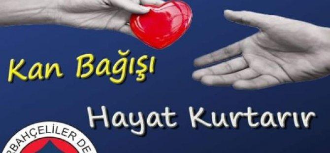 Kktc Fenerbahçeliler Derneği, 13 Ve 14 Ağustos'ta Kan Bağışı Kampanyası Yapacak