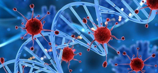 Türk doktor kansere karşı ilaç geliştirdi: 'Doğrudan tümöre ulaşıp yok ediyor'