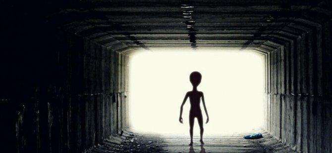 Dünyaca ünlü bilim insanı: Zeki uzaylıları ölmeden önce göreceğiz