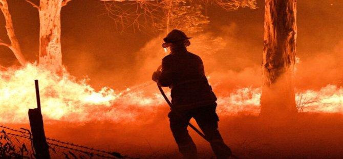 Sami İbiş'e Ait Arazide Yangın Çıktı