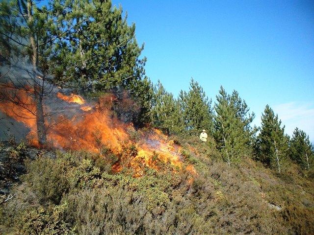 Olası orman yangınları için 120 kişilik ekip!