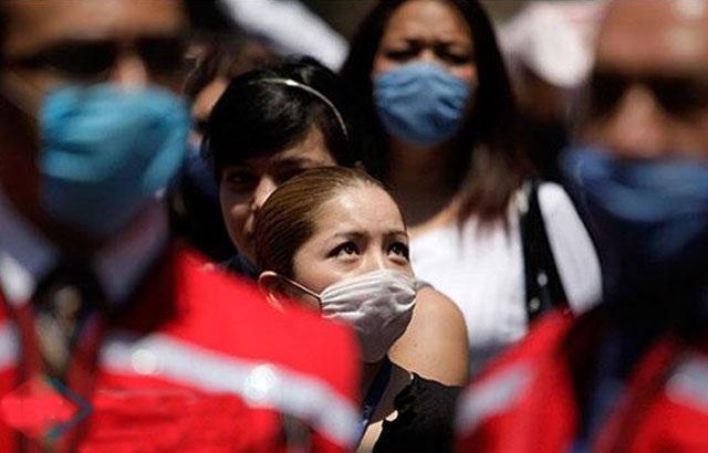 Türkiye'de Domuz Gribi paniği