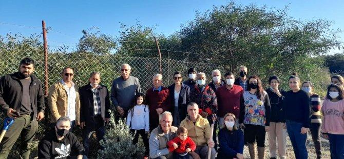Girne'de Fidanlar toprakla buluştu
