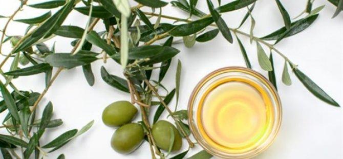 """Zeytin Yaprağı Çayı İle İlgili """"Sıcak Su"""" Uyarısı"""