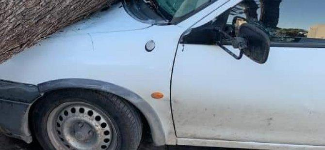 Devrilen ağaç araçların üzerine düştü, hasar oluştu