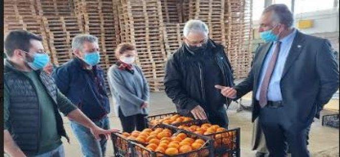 Bakan Çavuşoğlu: Üreti̇mi̇n devamı i̇çi̇n destek olmayı sürdürüyoruz