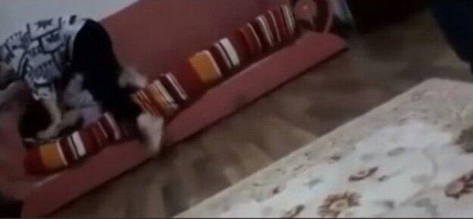 Kızına şiddet uygulayan kadının görüntüleri Türkiye'yi salladı! Büyük tepki