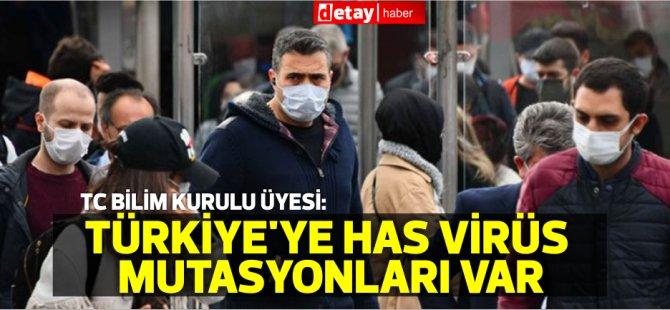 Bilim kurulu üyesi: Türkiye'ye has virüs mutasyonları var