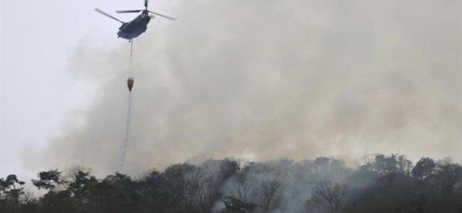 Japonya'nın Toçigi Eyaletinde 21 Şubat'tan Beri Süren Yangında 106 Hektarlık Ormanlık Alan Zarar Gördü