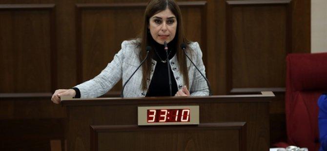 Dilekçe Ve Ombudsman Komitesi Başkanı İzlem Gürçağ Seçildi