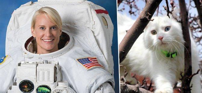 Van Gölü'nü uzaydan fotoğraflayan astronot Rubins'e Van kedisi hediye edilecek