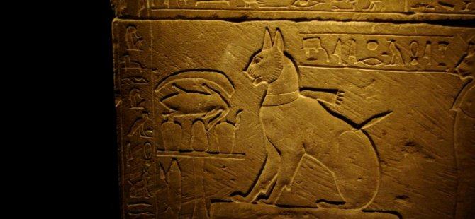 Antik Mısırlılar kedilere neden takıntılıydı?
