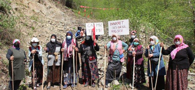 İkizdere'de taş ocağına karşı 74 gündür mücadele eden köylüler kararlı: Bu dağlar, ağaçlar bizim, kesinlikle pes etmeyeceğiz