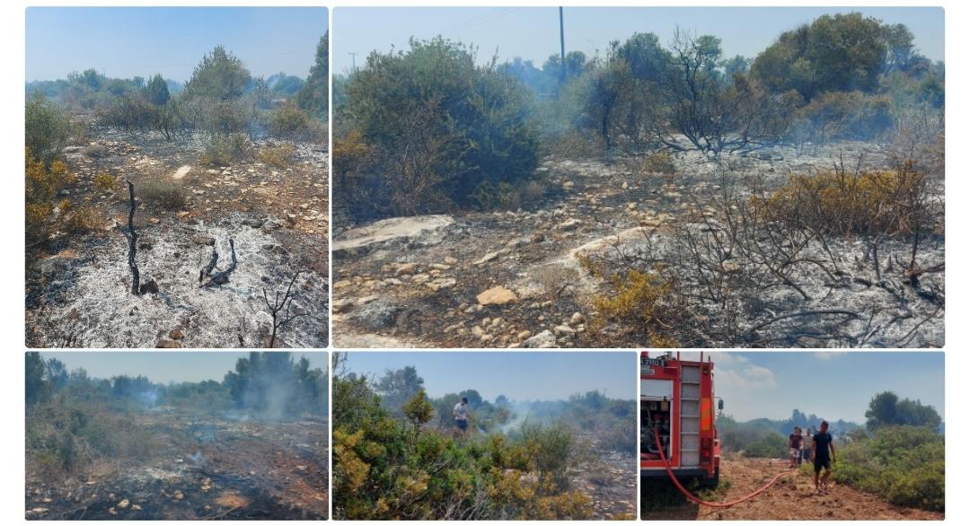 Bafra'da yangın çıktı!