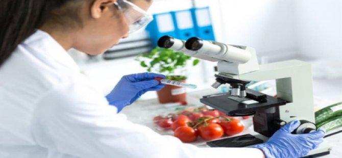 Üç İthal Üründe Limit Üstü Bitki Koruma Ürünü Tespit Edildi