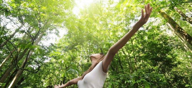 Ruh ve Beden Sağlığınız İçin Doğada Vakit Geçirin