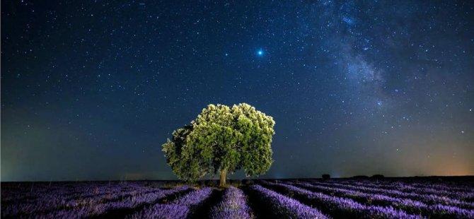 İnsanlığın galaktik medeniyet kurma rüyası: Geleceğin ve bugünün öncelikleri birbiriyle çelişiyor mu?