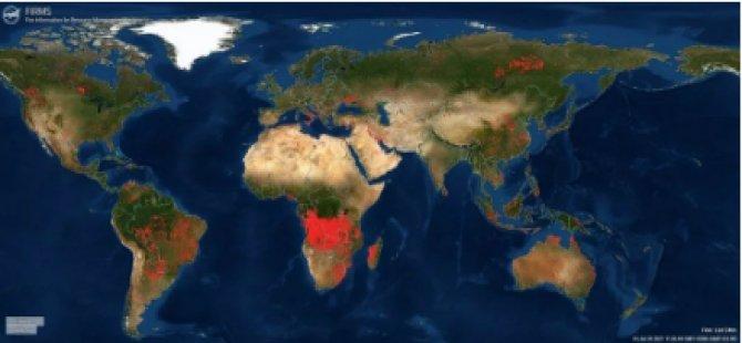 NASA, Dünyadaki Orman Yangınlarını Takip Etmek İçin Yeni Bir Platform Kurdu: Türkiye'deki Yangınlar Uydudan İzlenebiliyor
