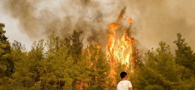Türkiye'deki yangınlarda son durum: 129 yangından 122'si kontrol altında