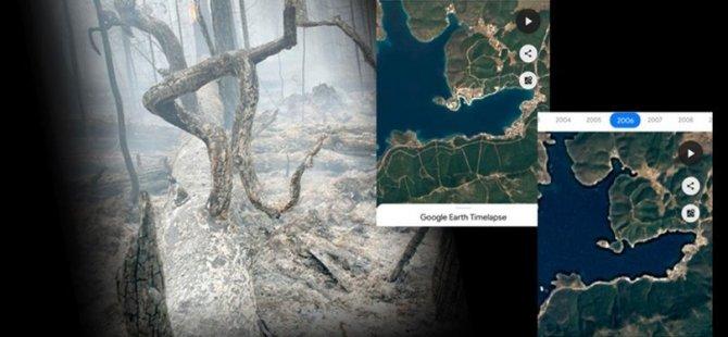 Yangın bölgelerindeki yıldan yıla değişimin özeti: Giden geri gelemedi!