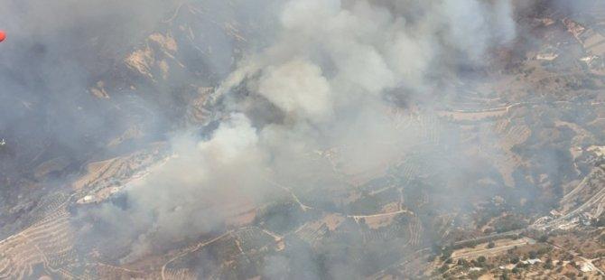 Baf'ta büyük yangın
