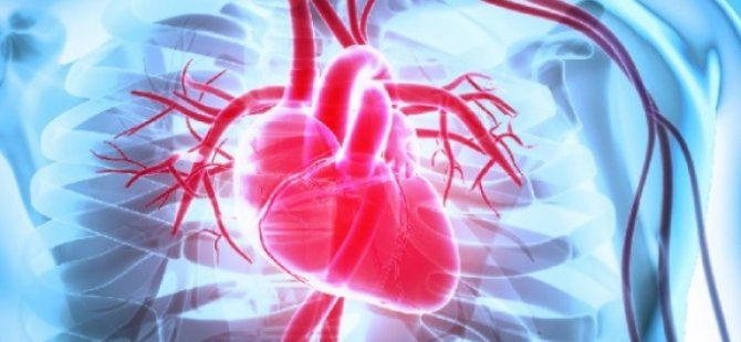 Kalp damarı tıkalı olanlar aşı karşıtlığı yapmamalı