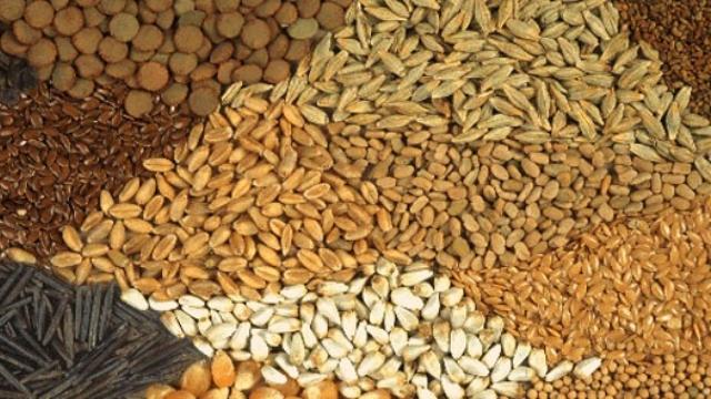 Tahıl, Bağ ve çeşitli ürün listelerine itiraz süresi Cumaya kadar uzatıldı