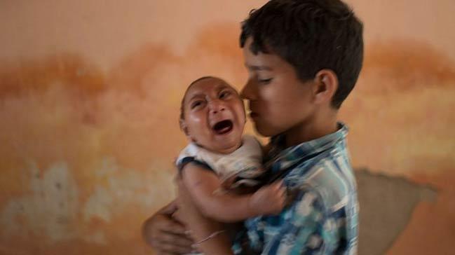 Zika virüsünün nedeni küresel ısınma mı?