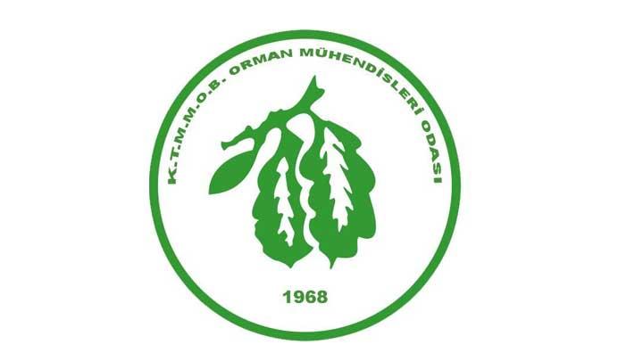 """Conkbayır: """"Orman Dairesi'nin özel mülkteki kesimi engellemesi mümkün değil"""""""