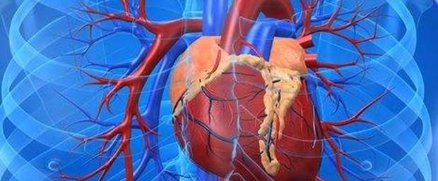 Kalp hastaları dikkat: Bilinçsiz egzersizin faydadan çok zararı var