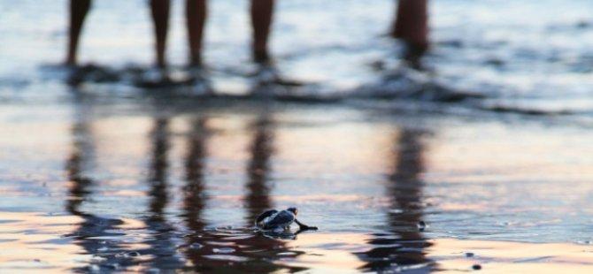 Denizlerin halkın olup, olmadığı halen meçhul...