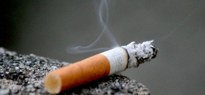 Sigara izmariti evi yaktı!