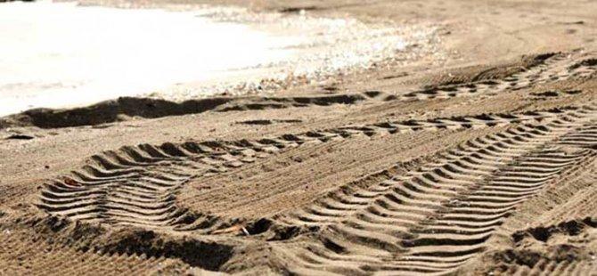 Kaplumbağaların yumurtladığı sahilde, buldozerli temizlik!