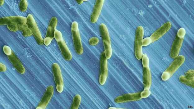 Süper mikrop tehlikesi: 3 saniyede 1 kişi ölebilir