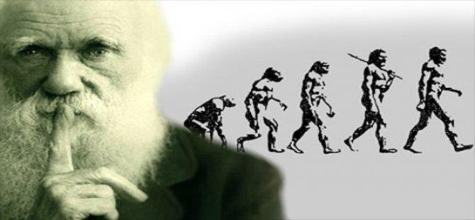 Evrim'de tüm bilinenleri değiştirecek fosil bulundu!
