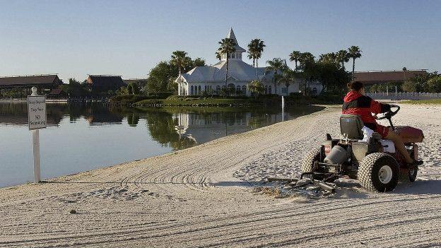 Disney World yakınlarında timsahın suya çektiği çocuğun 'cesedi bulundu'