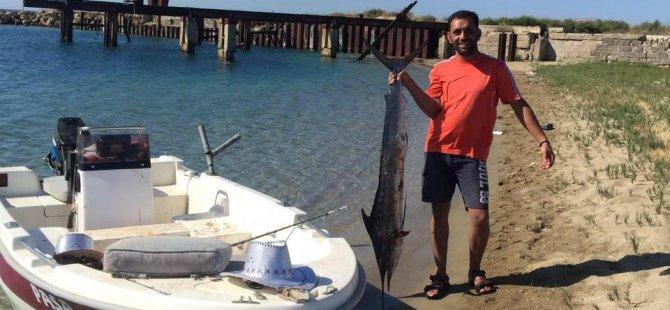 Olta ile 1,70 m kılıç balığı yakaladı