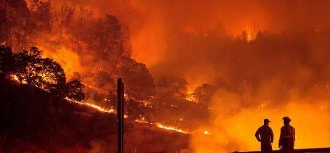 """LÇTD; """"yanan ağaçlar tüm Kıbrıs'ın oksijen tüpü ve ciğerleri"""""""
