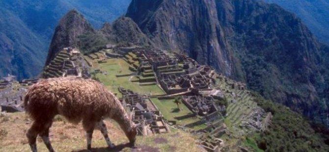 Machu Picchu'da 'uçuş selfiesi' çekerken uçurumdan düştü