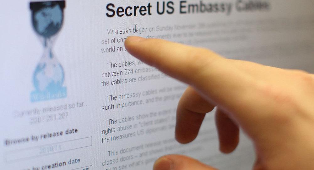 WikiLeaks: Yayımlayacağımız belgeler AKP'ye hem yardımcı olacak hem de zarar verecek