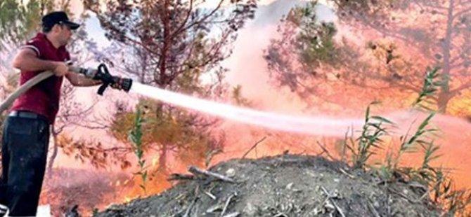 Çamlıbel Yangınının Bilançosu Ağır: 13 Bini Aşkın Ağaç Kül Oldu