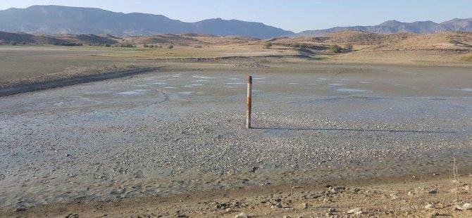 Kanlıköy Barajı kurudu, binlerce balık telef oldu