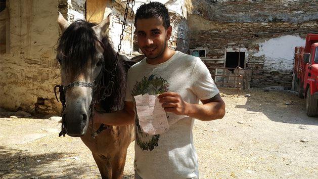Yarış atına trafik cezası