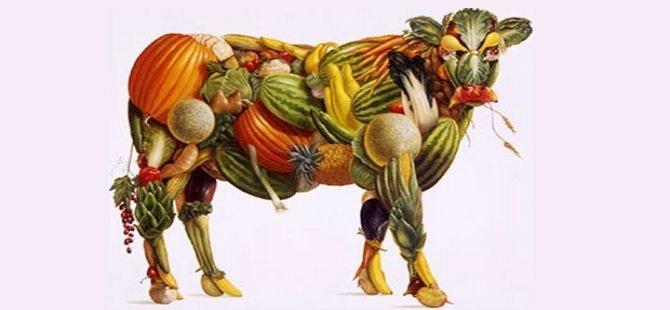 Herkes vejetaryen olsa ne olurdu?