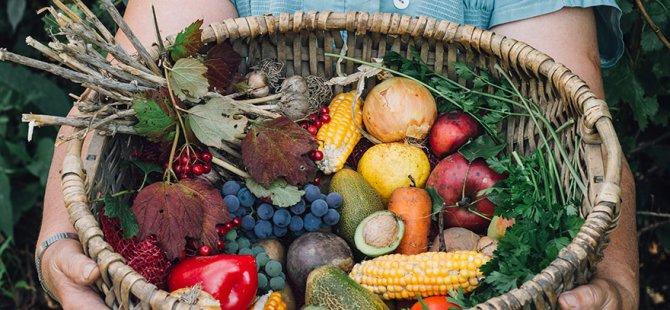 Meme kanserinden koruyan 8 kırmızı besin
