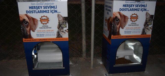 LTB'den sokak hayvanları için suluk ve yemlik
