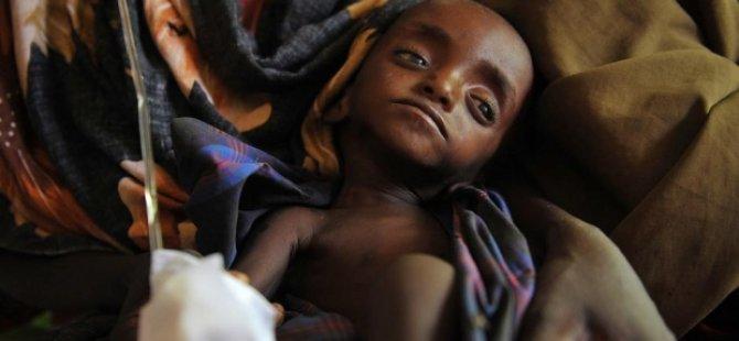 800 milyon insan açlık çekiyor